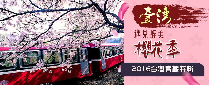 台灣2016櫻花祭